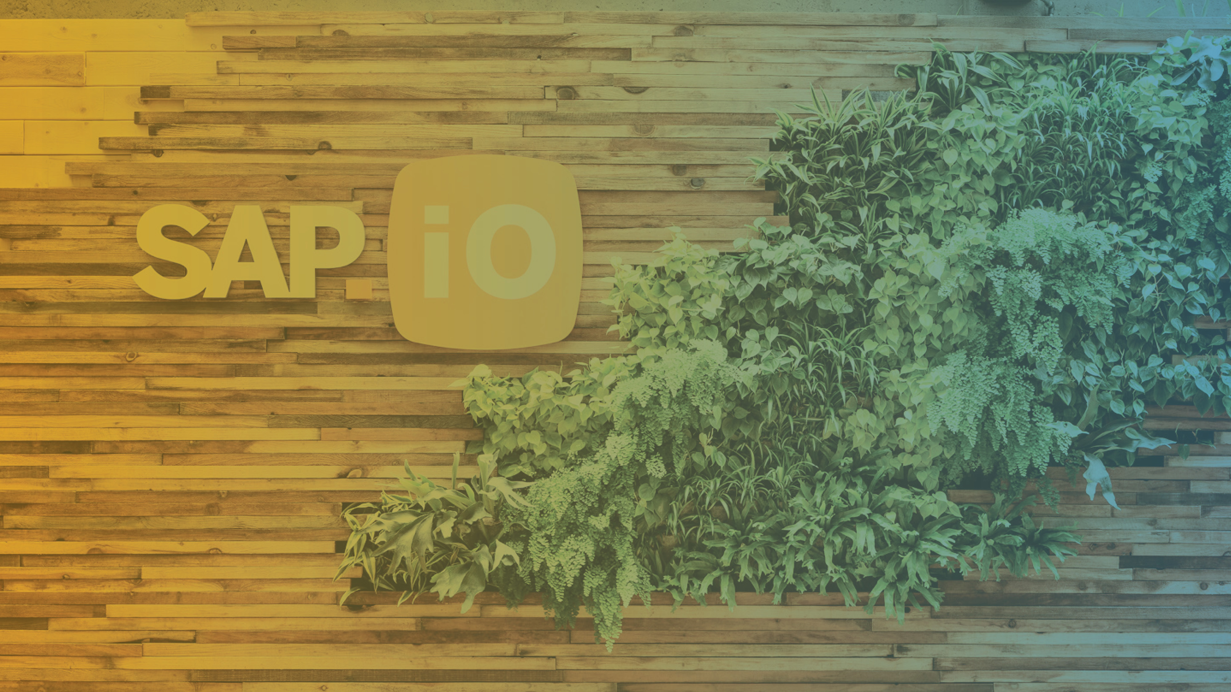 SAP.iO: Why 3 is Key to SAP's Startup Wins