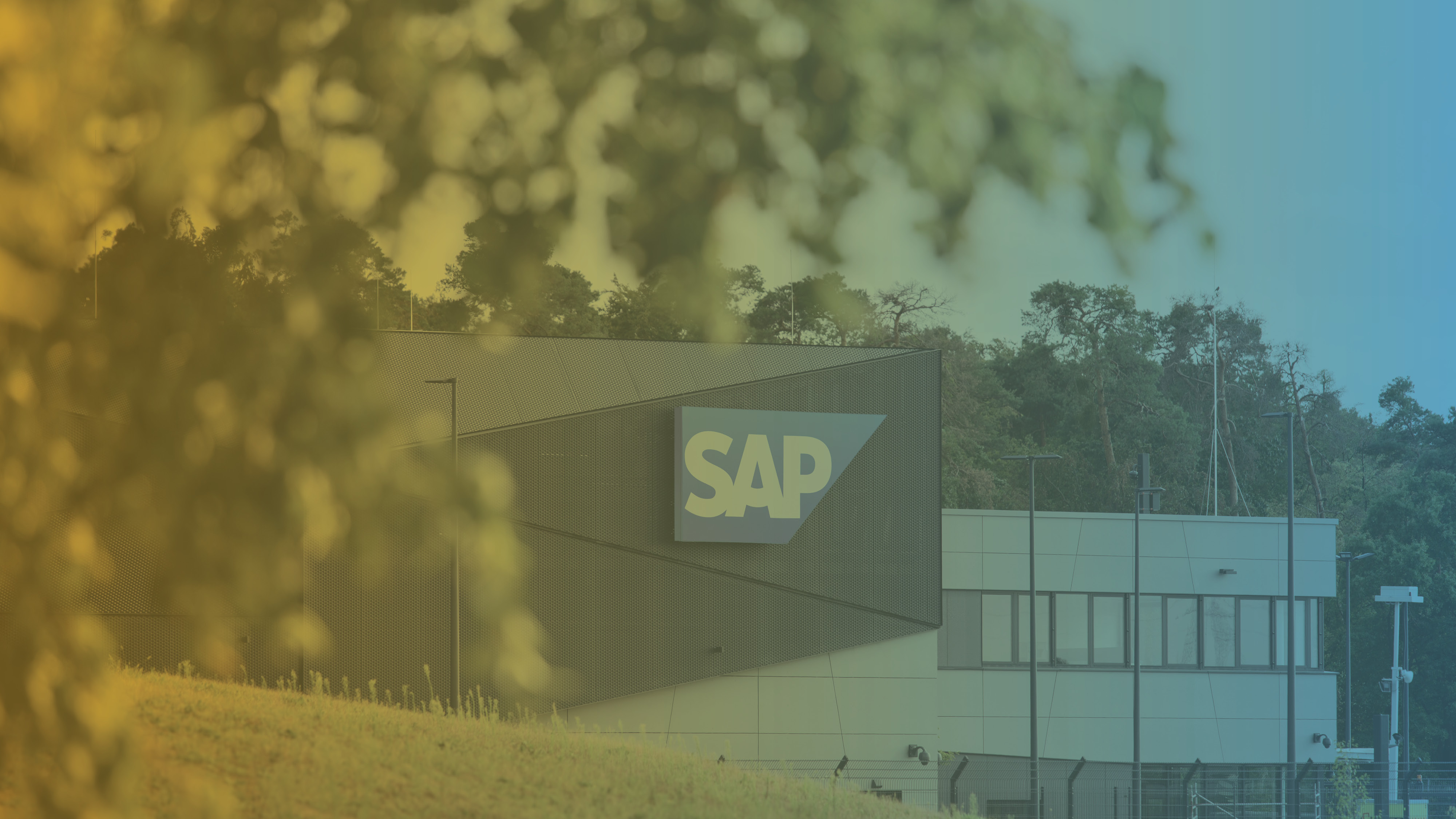 SAP receives the European startup-friendly certificate and takes the lead on GlassDollar's corporate-startup collaborations ranking